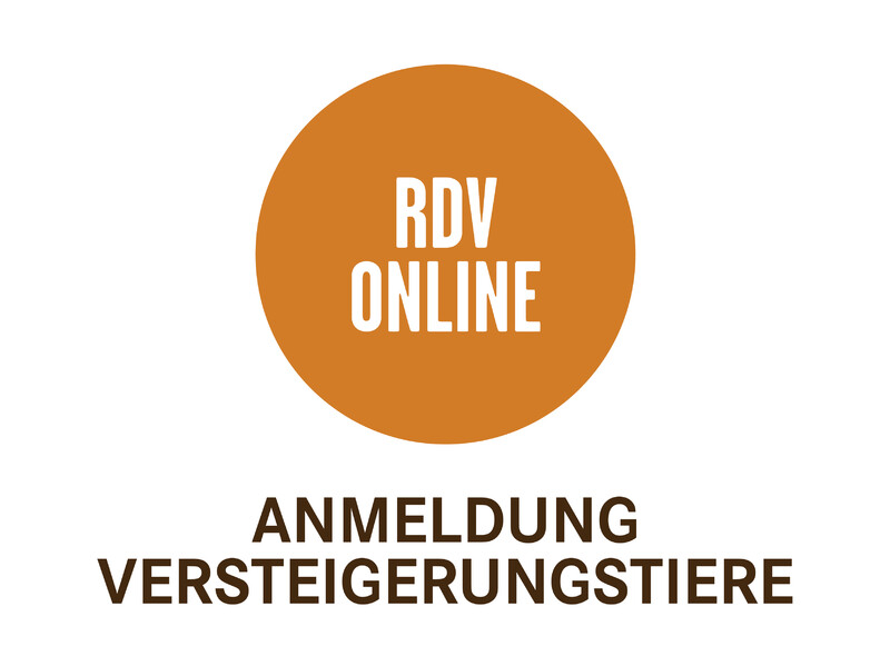 RDV online_Icons_800x600px