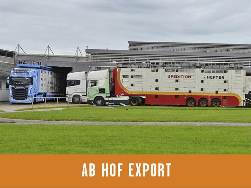 Ab Hof Export neu_800x600px_ohne